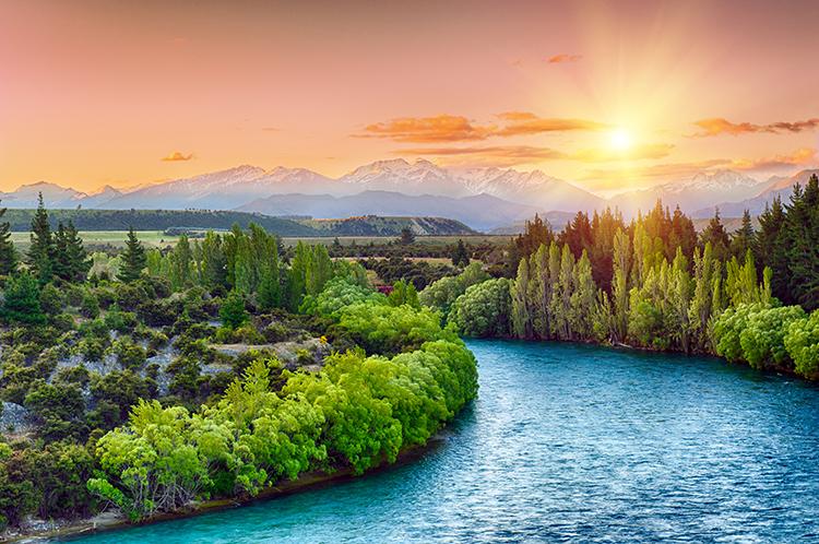 New Zealand Lockdown Low Mortality Rate