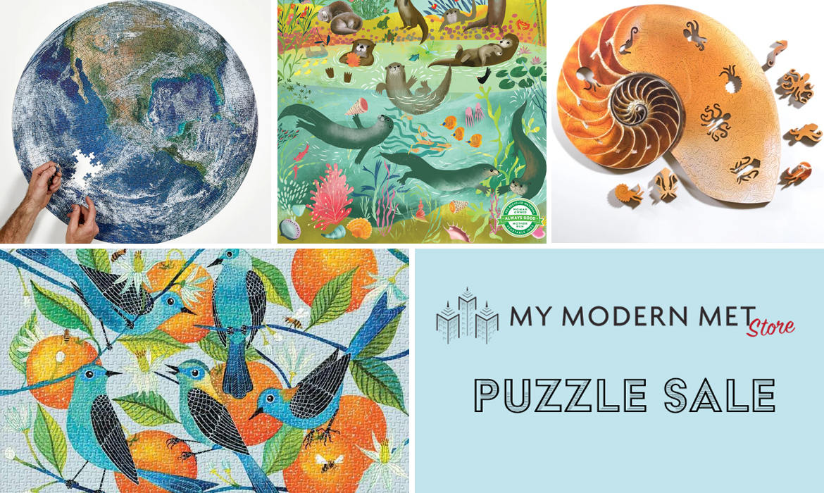 Puzzle Sale at My Modern Met Store