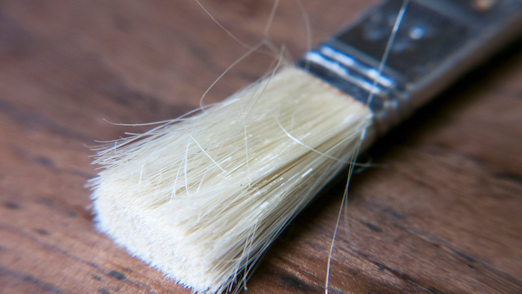 Paintbrush Bristles