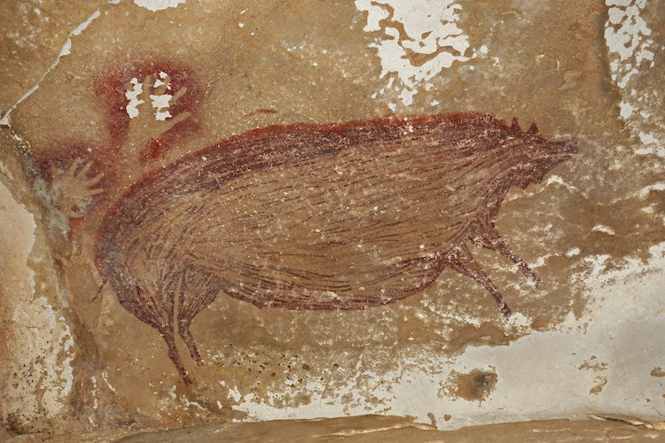 This Warty Pig Cave Painting May Be the Oldest Depiction of an Animal Ever Discovered