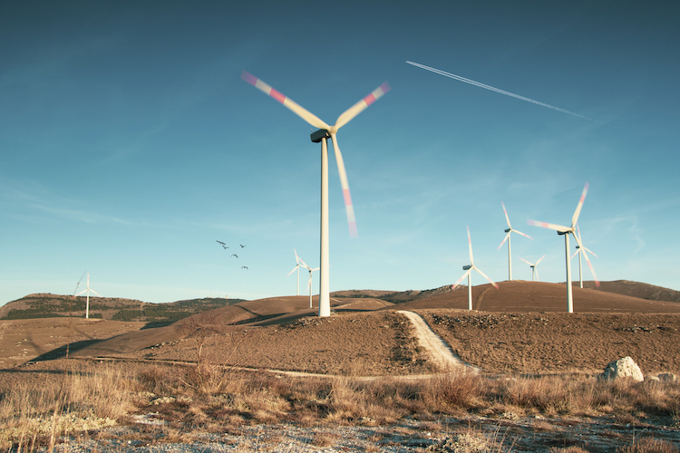 This New Wind Turbine Feature Could Save Eagles and Other Birds