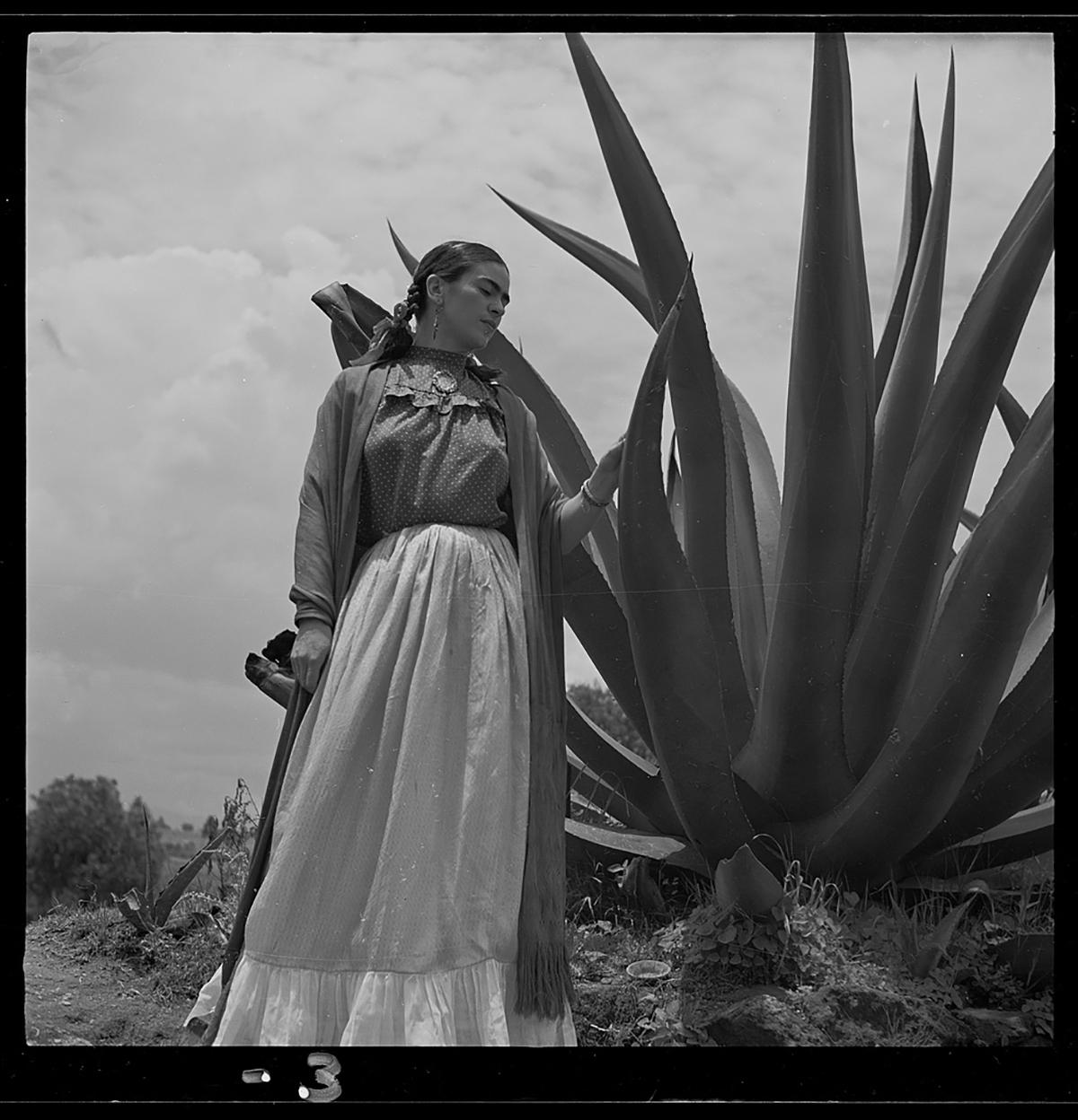 Frida Kahlo My Modern Met Infographic Fun Facts Artist