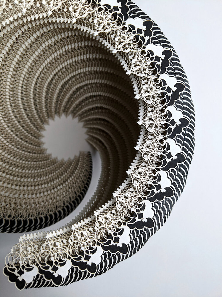 Symbio Vessels Intricate Laser Cut Paper Forms by Ibbini Studios