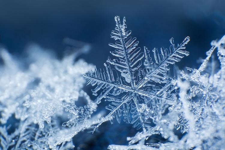 Snowflake Melting In Reverse