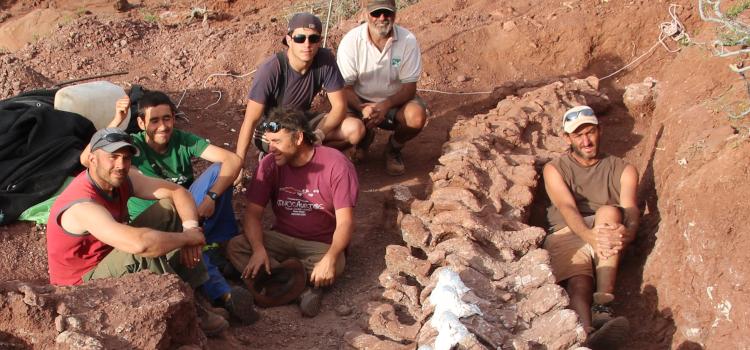 Nuevo fósil de Titanosaurio hallado en la Patagonia