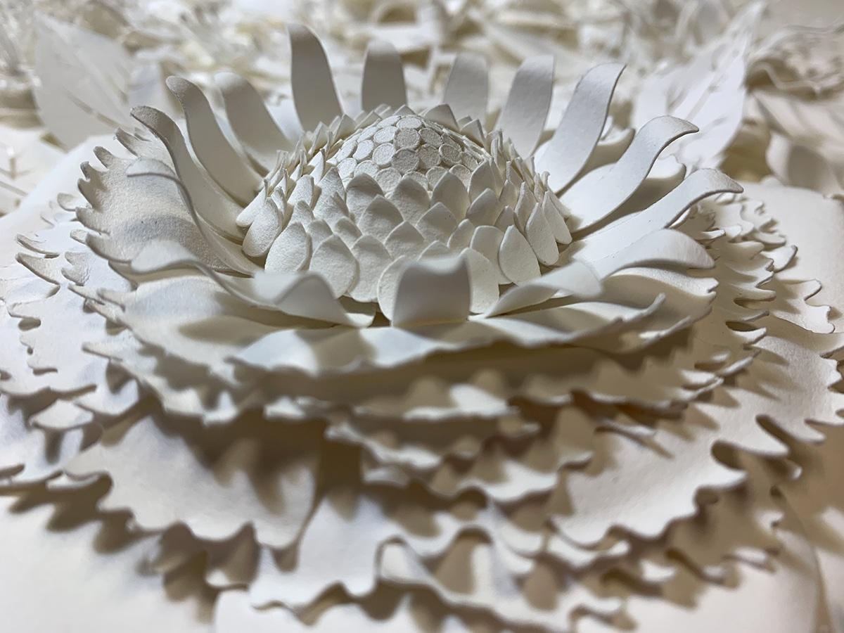 """""""Lush"""" Paper Flowers by Tara Lee Bennett"""