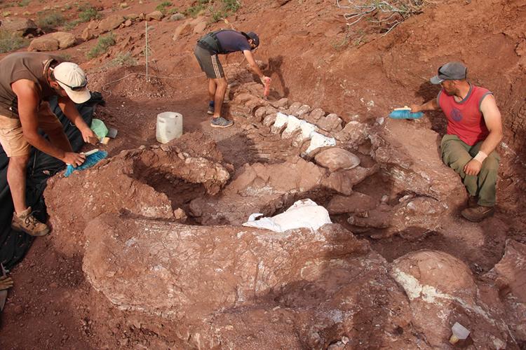 Nuevo Titanosaurio hallado en la Patagonia