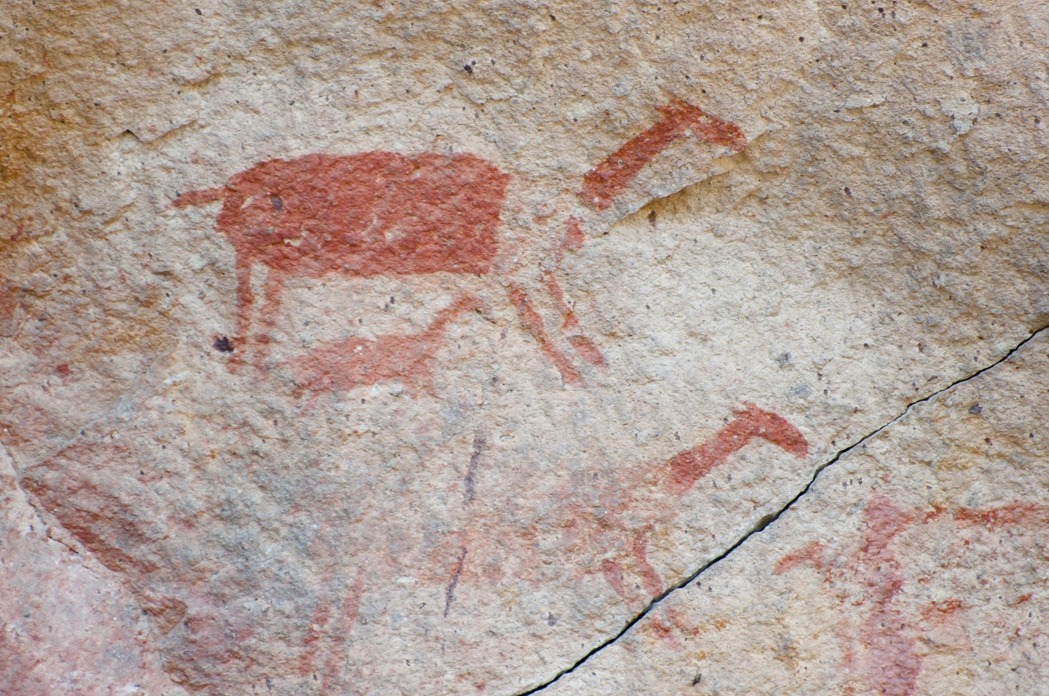 Dibujos de guanacos en la Cueva de las Manos