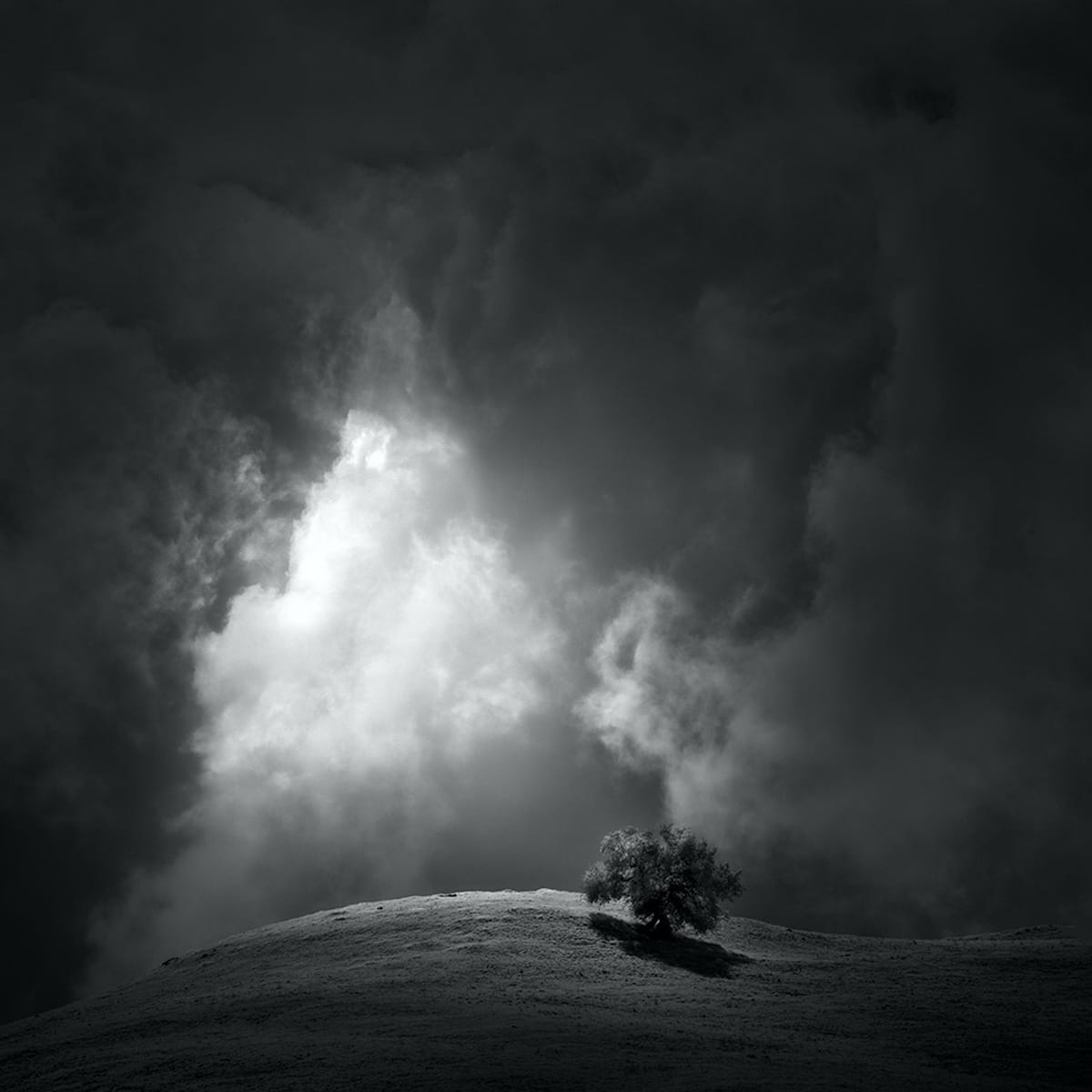Quietly by Nathan Wirth