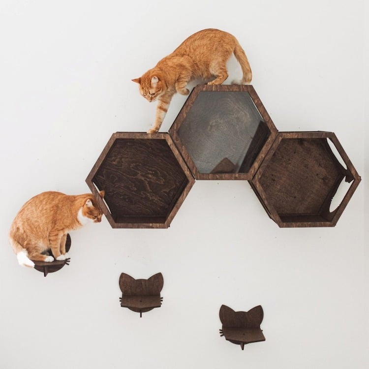 Cat Wall Furniture by Catsmode