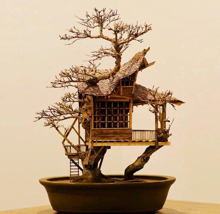 Bonsai Treehouses by Dave Creek