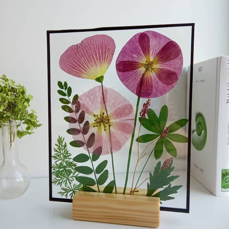 Dried Flower Art by Anna Zakirova