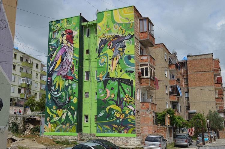 Bird Murals by Fio Silva