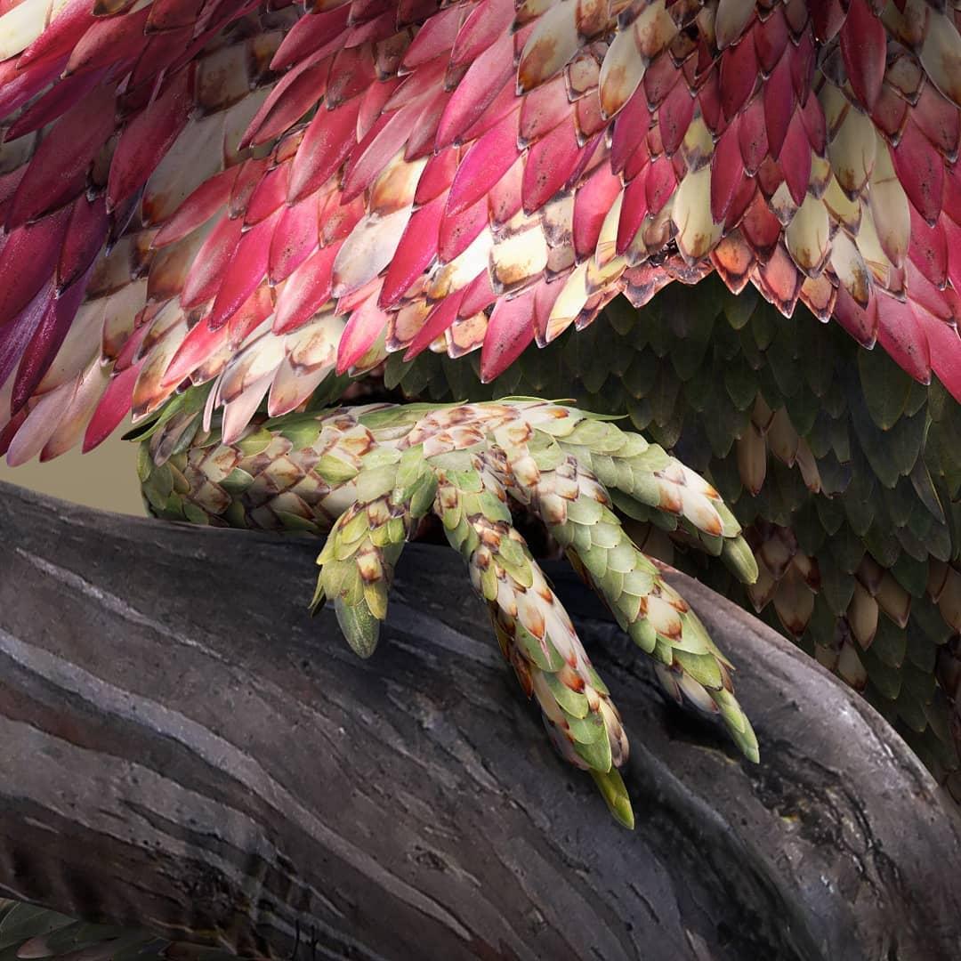 Flower Petal and Leaf Animal Photo Illustrations by Josh Dykgraaf