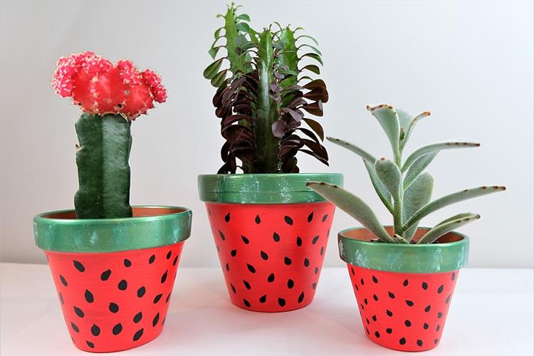 Flower Pot Craft