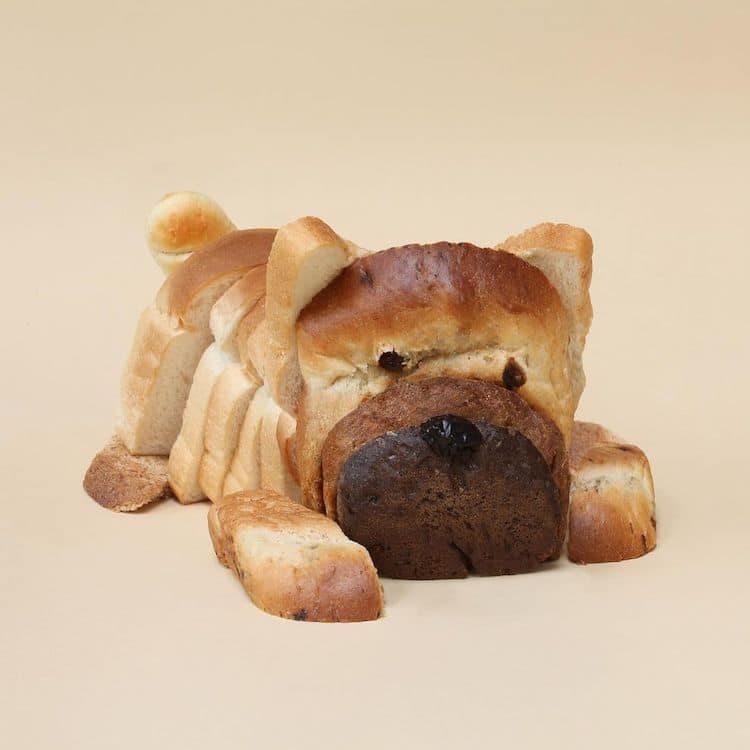 Household Surrealism by Helga Stentzel