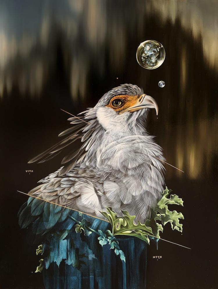 Pinturas realistas de aves por Josie Morway