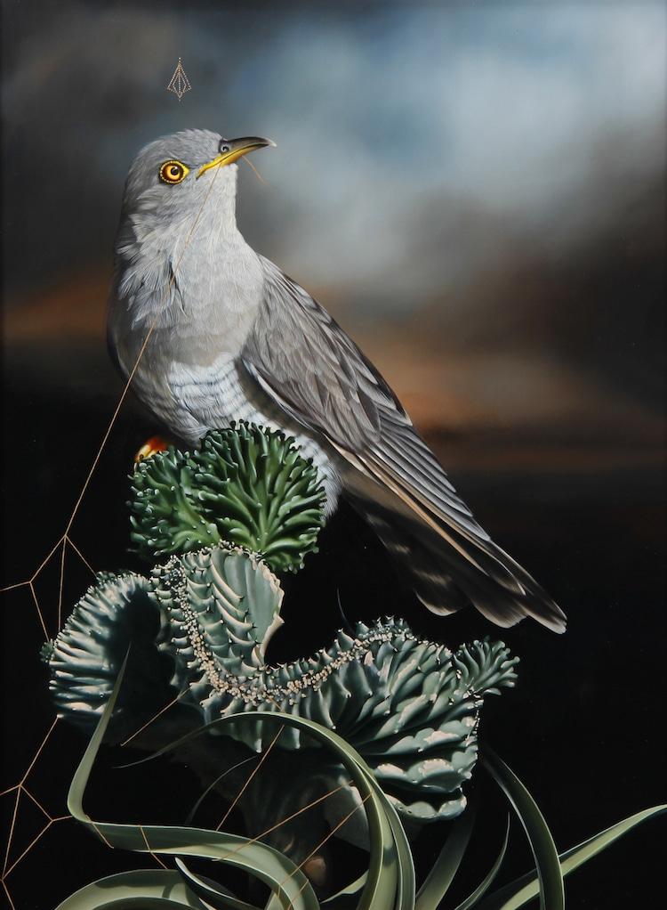 Bird Paintings by Josie Morway