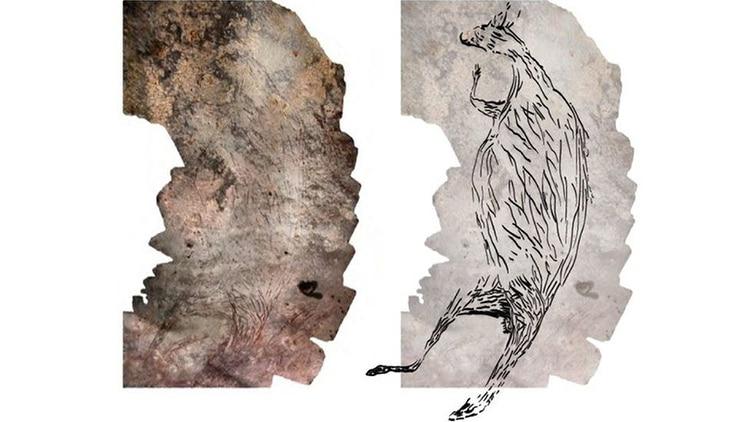 Kangaroo Rock Painting Aboriginal Art Kimberly Australia