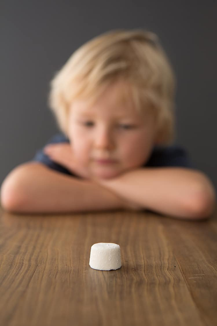 Stanford Marshmallow Experiment Test