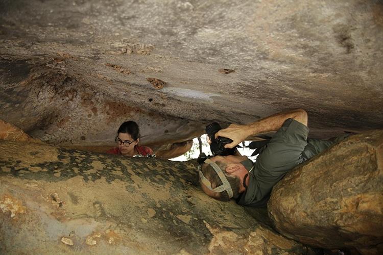 Mud Wasp Nests Kimberly Aboriginal Art