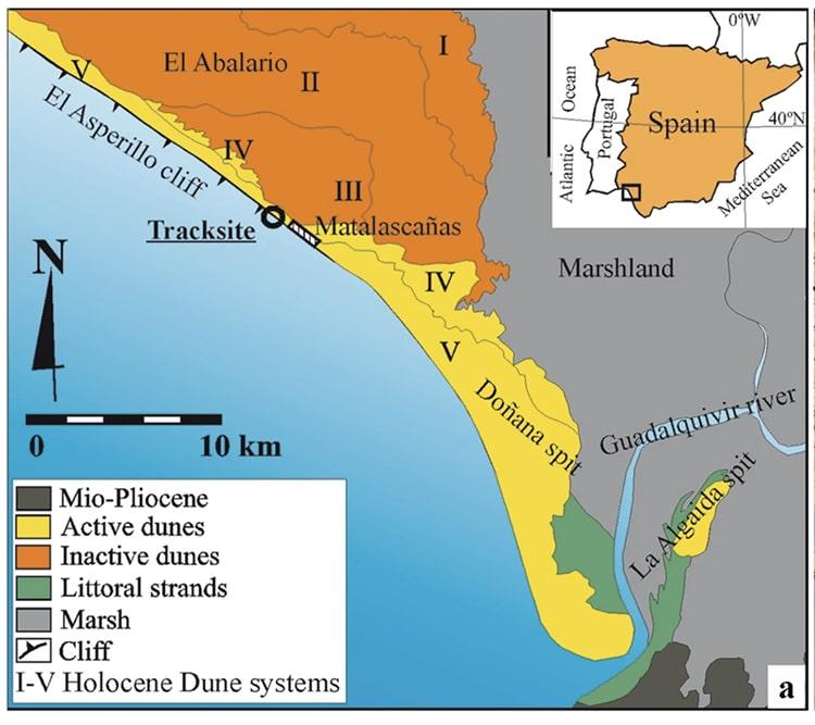Neanderthal Prints Spanish Coast
