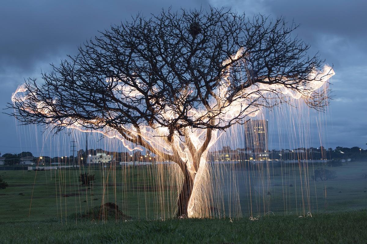 Vitor Schietti Light Painting Nature Photography