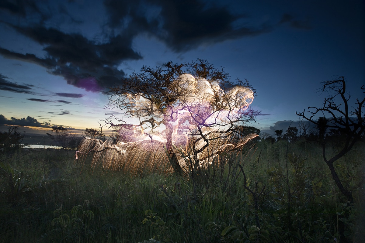 Vitor Schietti Light Painting Nature Photography
