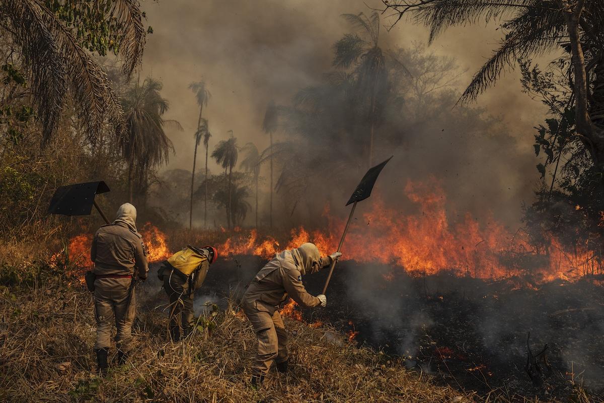 Des pompiers brésiliens combattent les incendies de forêt de 2020