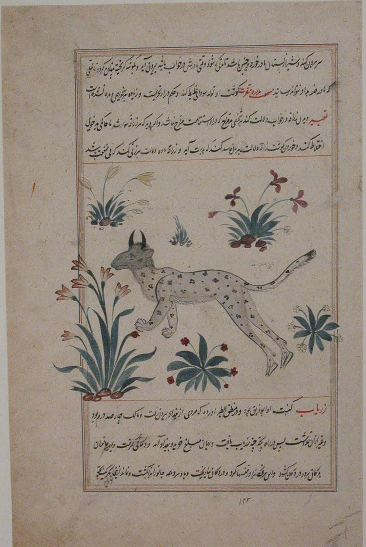 Bestiary and Herbal Iran