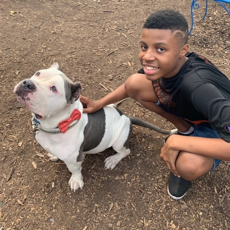 Sir Darius Brown With a Dog Wearing a Bow Tie