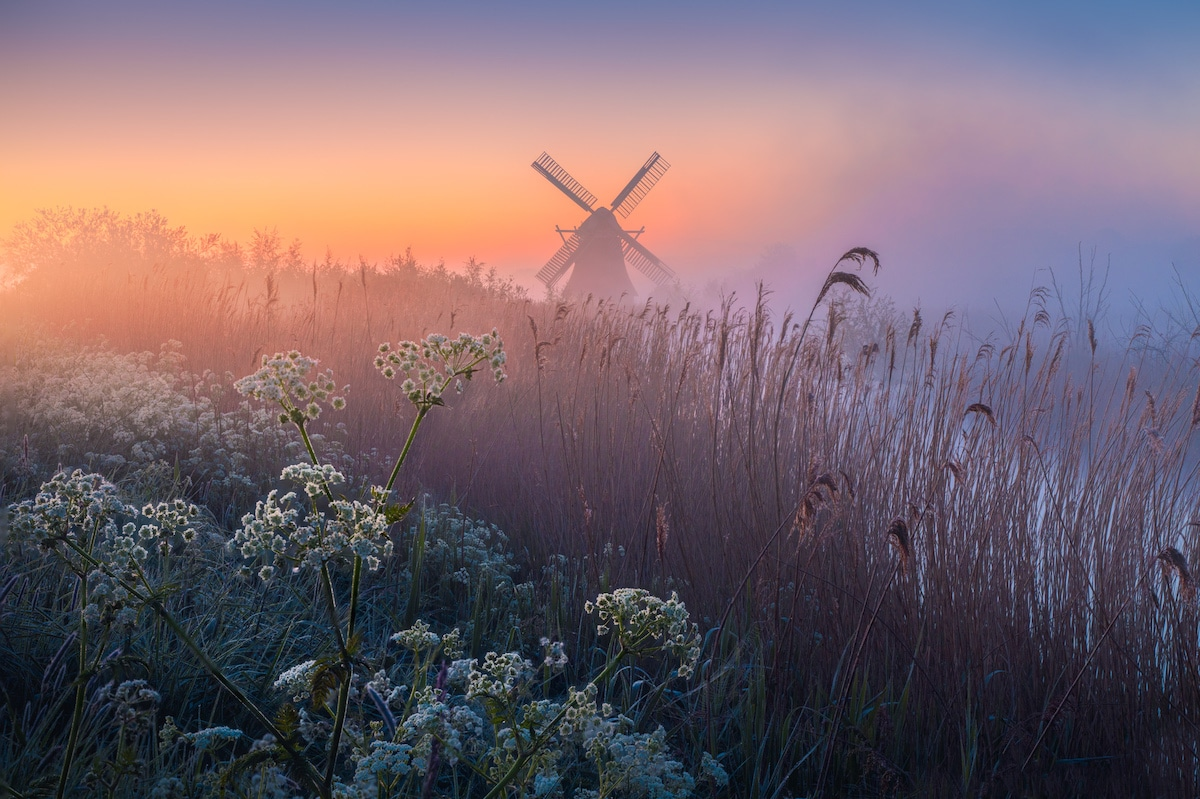 Windmill in Holland at Sunrise