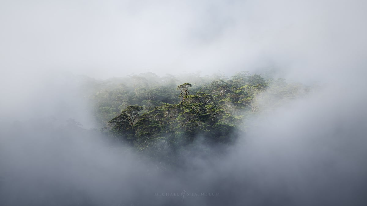 Mist Over the Milford Sound Waterfall in New Zealand by Michael Shainblum