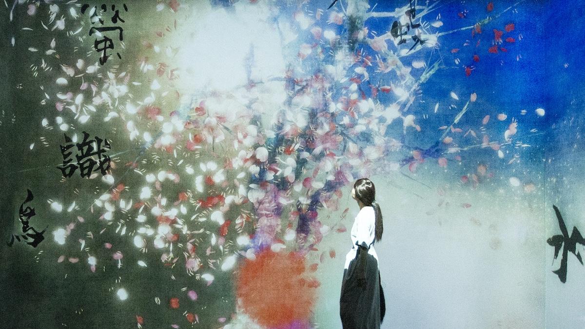 Immersive Digital Art by teamLab at CaixaForum Barcelona