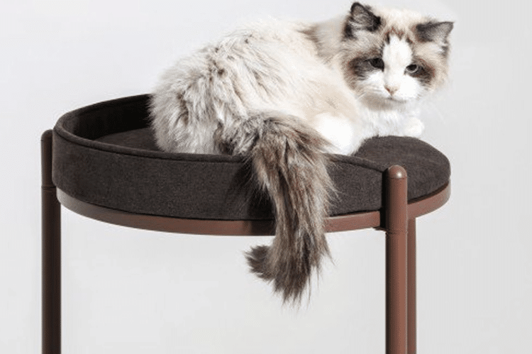 Watch Tower Cat Tower by Ziel Home Furnishing