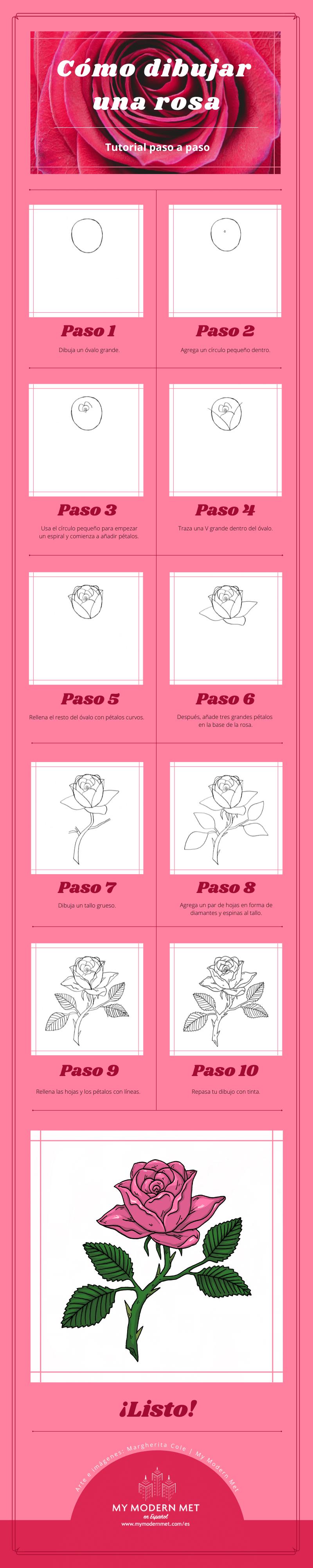 Infografía para hacer un dibujo de una rosa