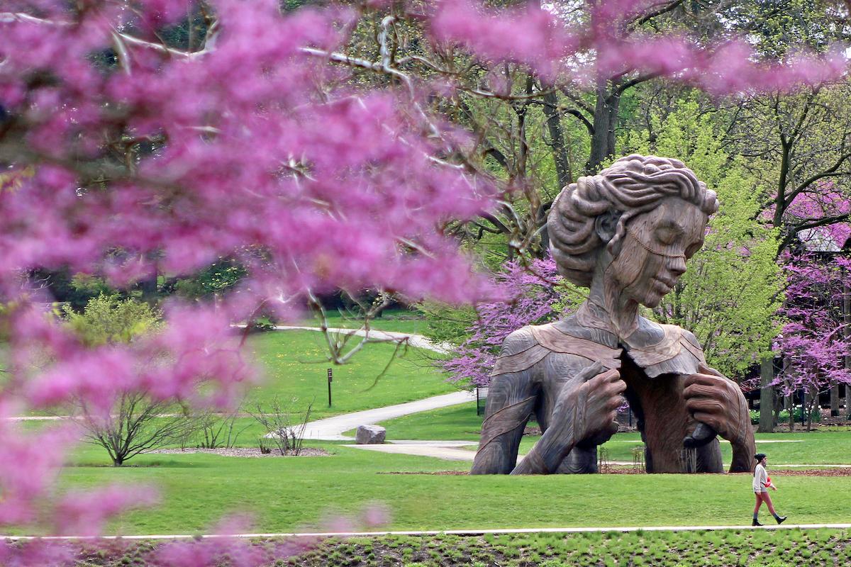 Hallow by Daniel Popper at the Morton Arboretum