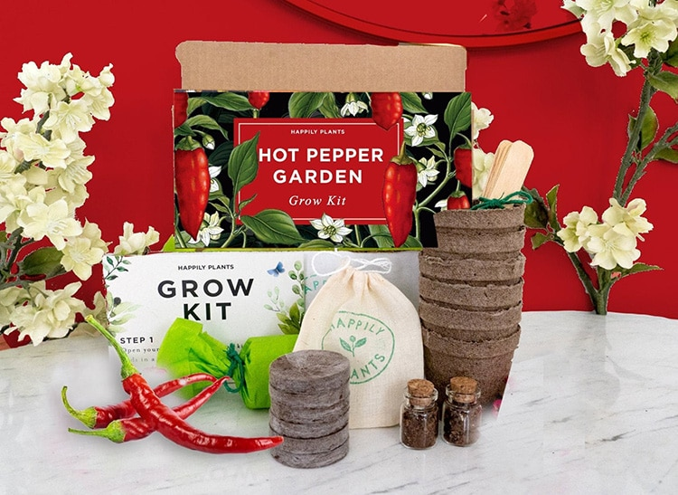Gardening Seed Starter Kit