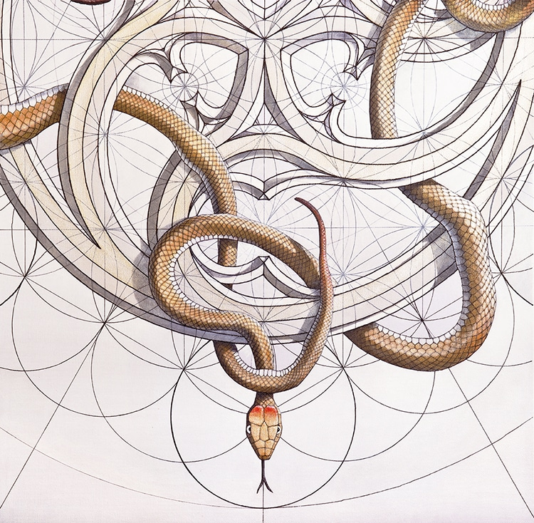 Coloring Book Art Inspired by the Golden Ratio