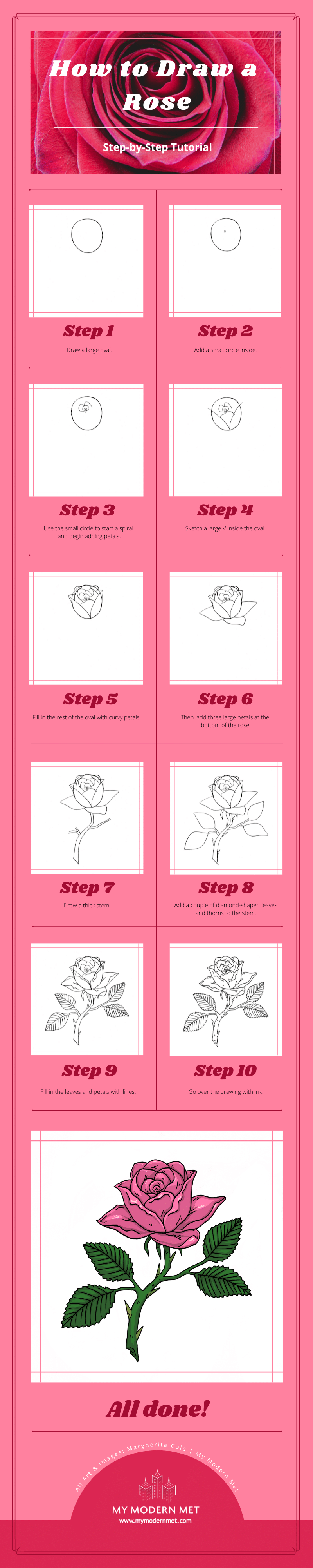 How to Draw a Rose Infographic