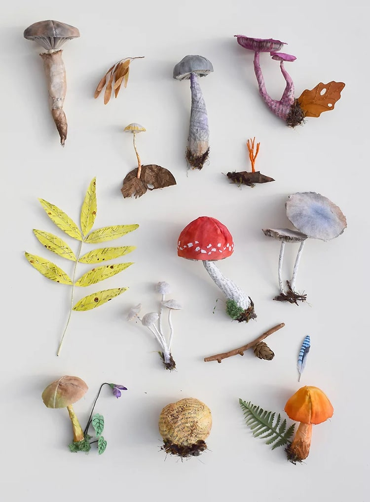 Paper Insects and Plant Life
