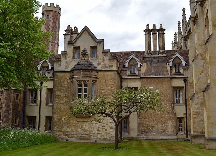Le pommier de Newton à Porter's Lodge, Cambridge