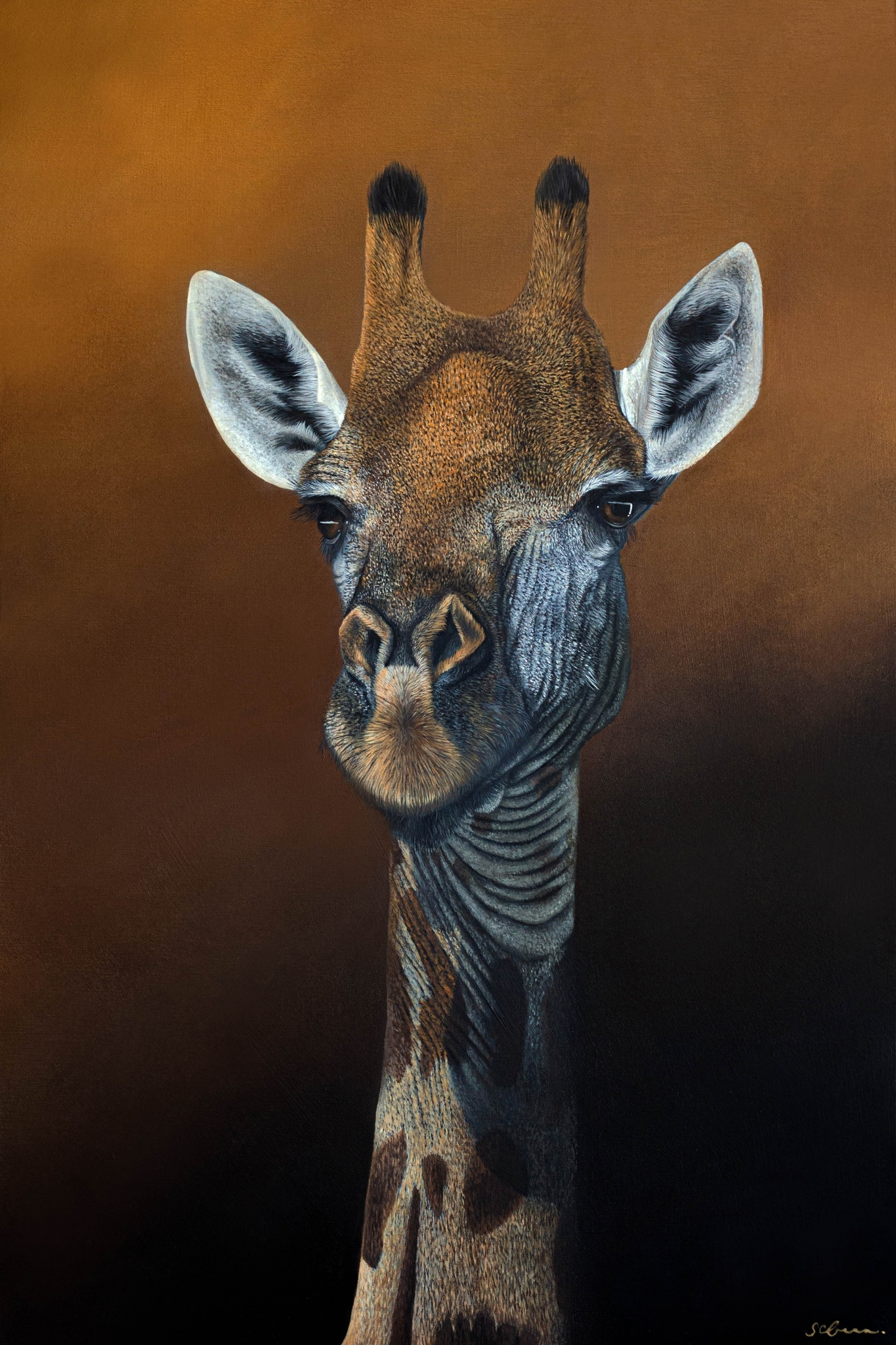 Animal Paintings by Sophie Green