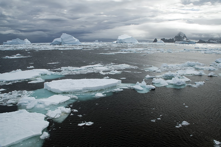 The Southern Ocean Surrounding Antarctica Has At Last Been Recognized by National Geographic
