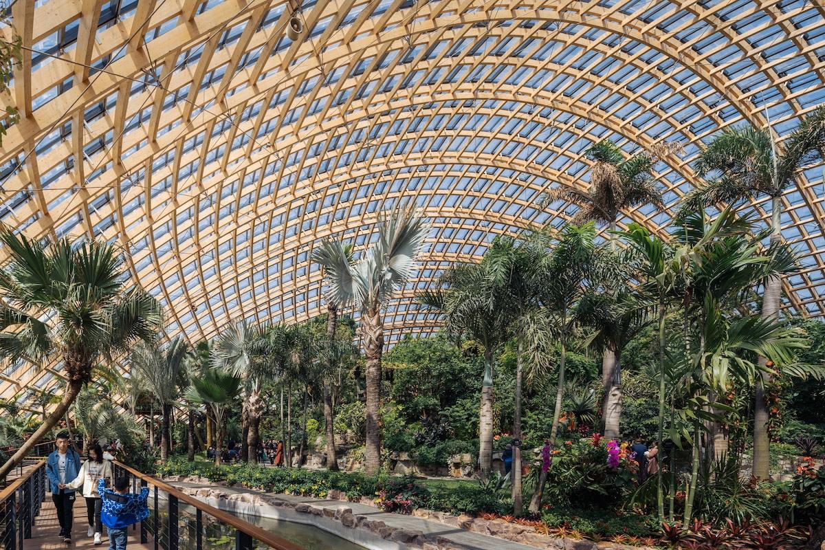 Interior Shot of Taiyuan Botanical Garden by Delugan Meissl Associated Architects