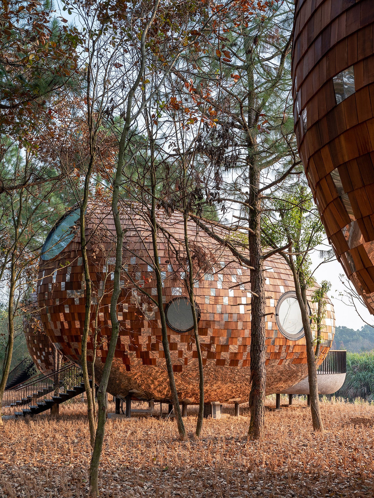 Exterior View of the Seeds Cabins in the Forests of Jiangxi