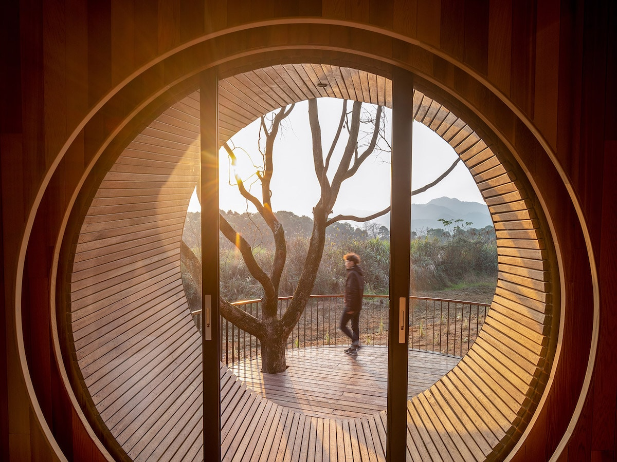 Interior View of the Seeds Cabins in the Forests of Jiangxi