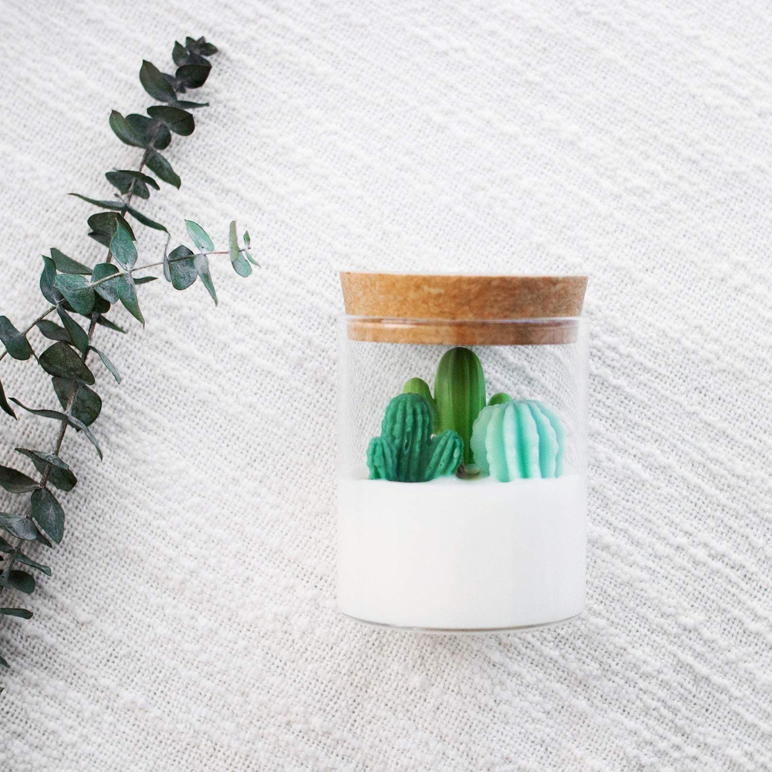 Cacti and Succulent Soy Candles by Zoet Studio