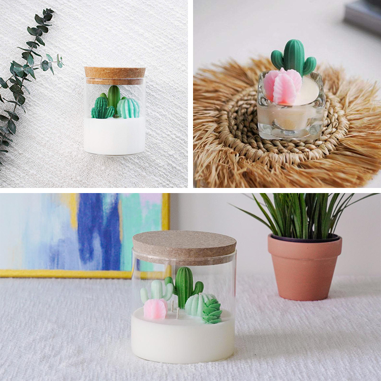 Cacti and Succulent Soy Candles