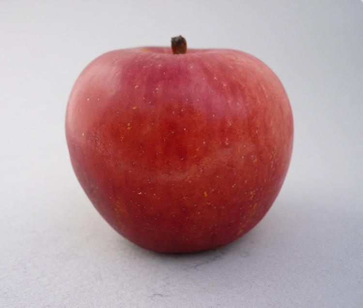 manzana belleza negra